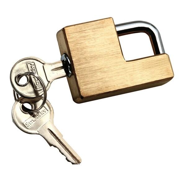 Reese Towpower 7005300 Brass Trailer Hitch Coupler Lock