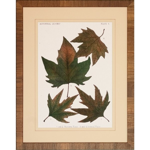 Autumnal Leaves Brown Wood Framed Art Print