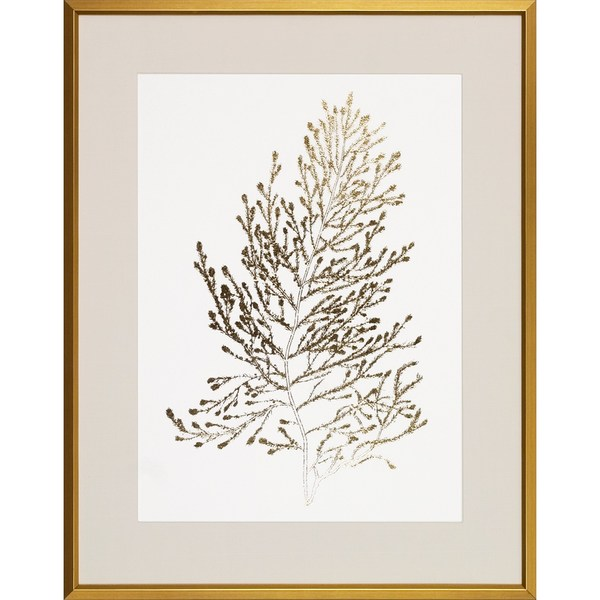 Gold Foil Algae' Gold Foil Top Layer Wood-framed Art Print