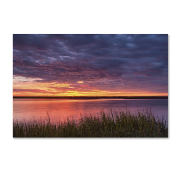 Michael Blanchette Photography 'Drama at the Marsh' Canvas Art