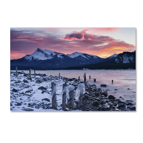 Michael Blanchette Photography 'Trees Bygone' Canvas Art