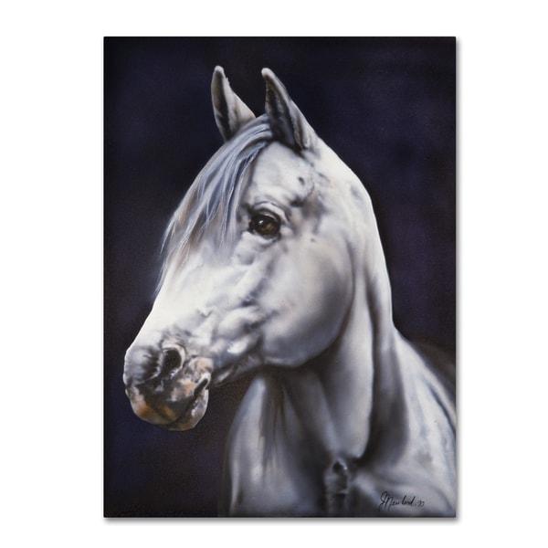 Jenny Newland 'White Arabian Stallion' Canvas Art