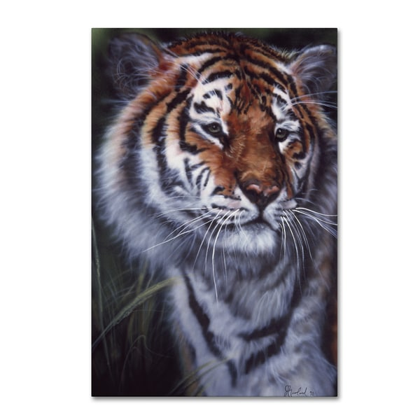 Jenny Newland 'Tiger In The Midst' Canvas Art
