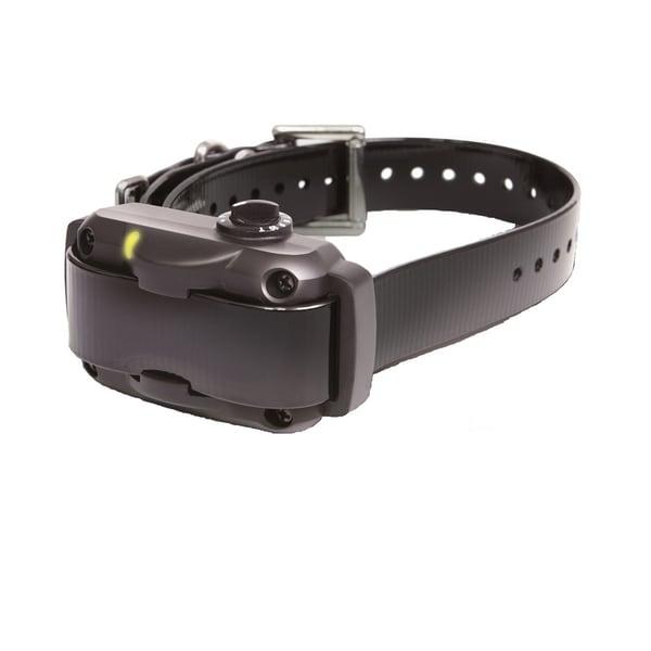 Dogtra Black Rapid Charging No Bark Dog Collar