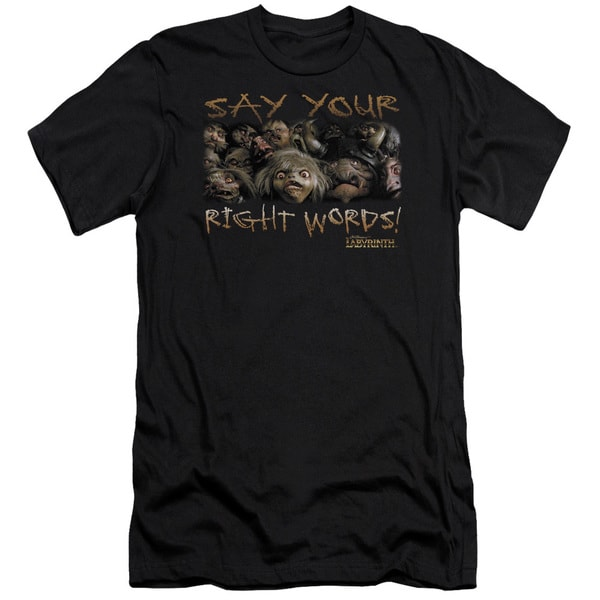 Labyrinth/Say Your Right Words Short Sleeve Adult T-Shirt 30/1 in Black