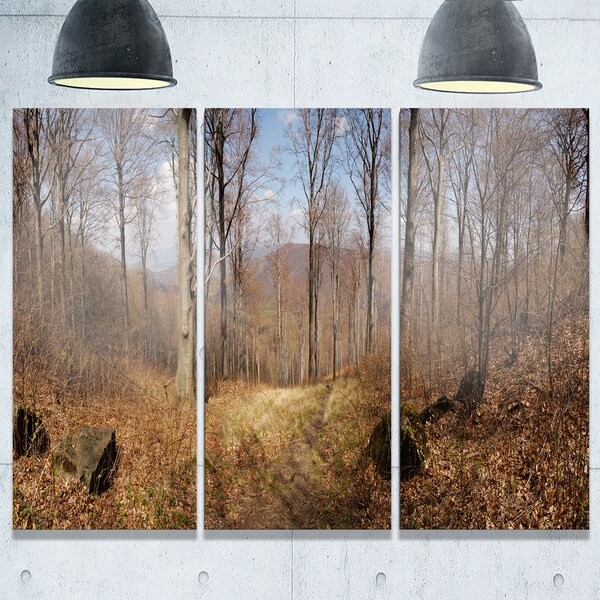 Forest Scenery with Bare Trees - Modern Forest Large Metal Wall Art - 36Wx28H
