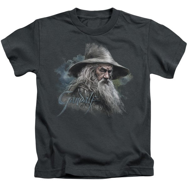 The Hobbit/Gandalf The Grey Short Sleeve Juvenile Graphic T-Shirt in Charcoal