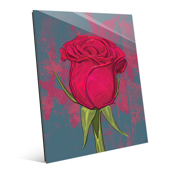 Rose Against Spruce Wall Art on Acrylic