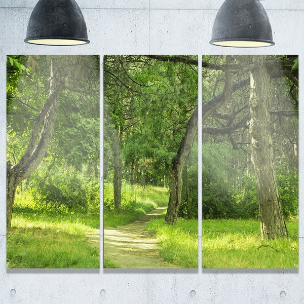 Designart - Green Forest Path in Early Summer - Landscape Photo Glossy Metal Wall Art