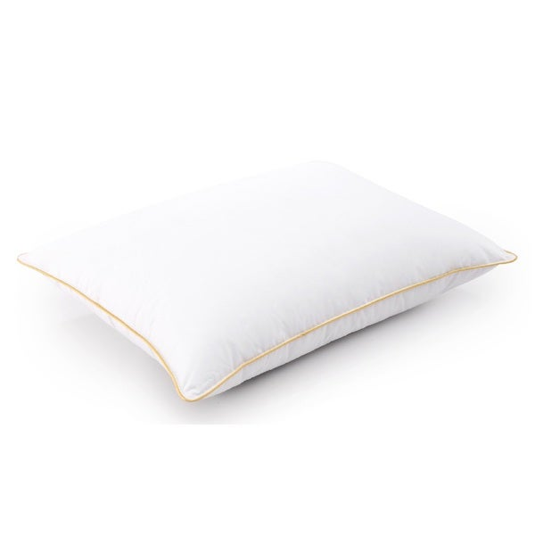 Cheer Collection 14x19-inch Hypoallergenic Toddler Pillow