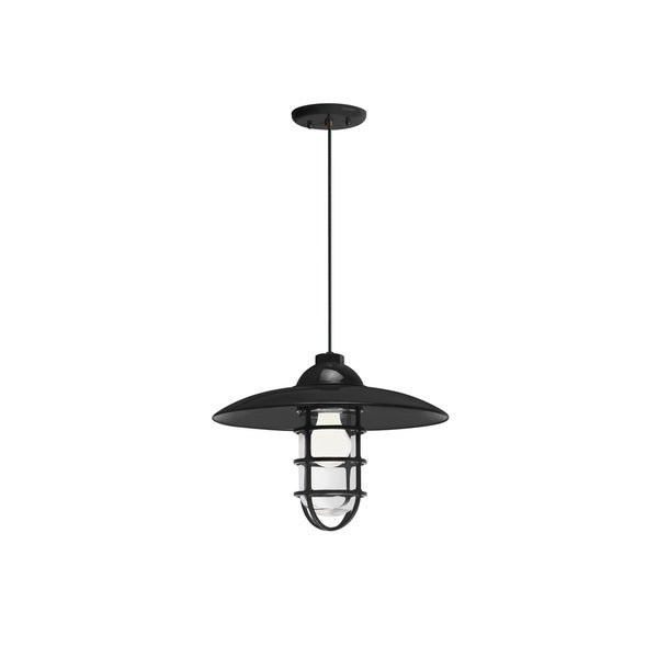 Troy RLM Lighting Retro Industrial Black Dome Wire Guard Pendant