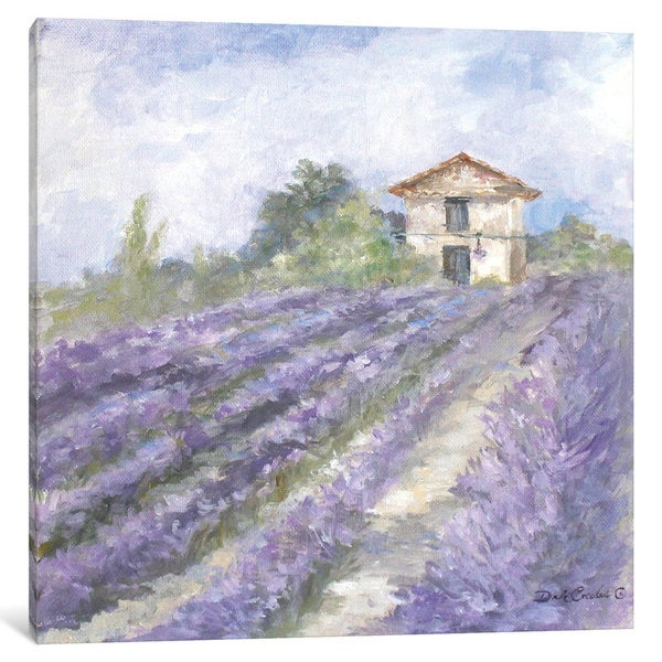 iCanvas French Farmhouse Series: Lavender Fields by Debi Coules Canvas Print
