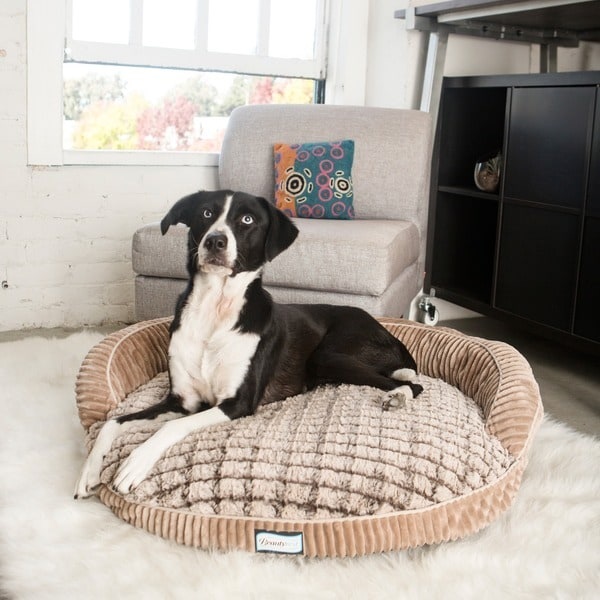 Simmons Beautyrest Ortho Sleep Memory Foam Orthopedic Dog Bed