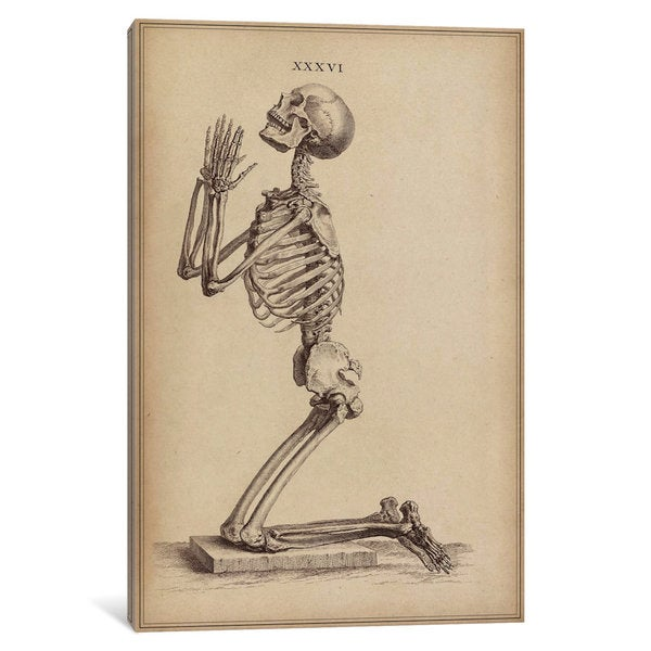 iCanvas A Praying Skeleton by William Cheselden Canvas Print