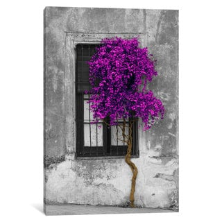 Silver Orchid 'Tree in Front of Window Purple Pop Color Pop' by Panoramic Images Canvas Print