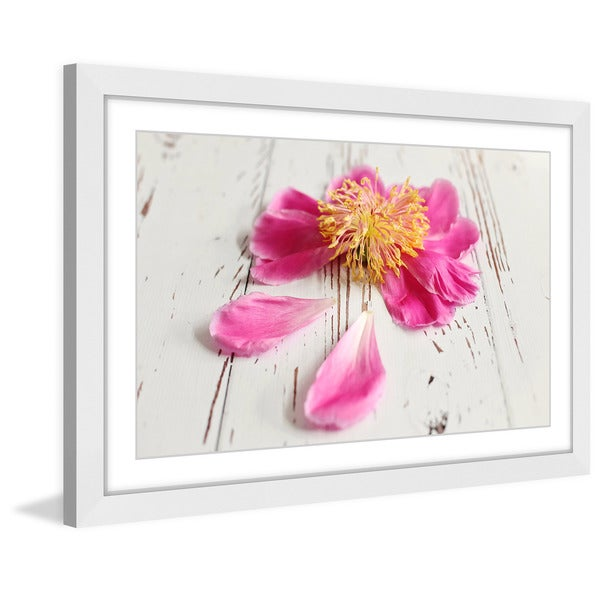 Marmont Hill - 'Single Pink Peony' by Sylvia Cook Framed Painting Print