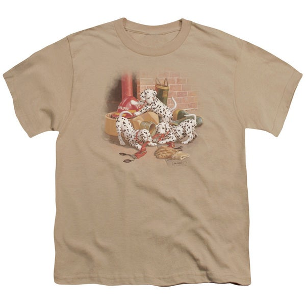 Wildlife/Wheres The Fire? Short Sleeve Youth 18/1 in Sand