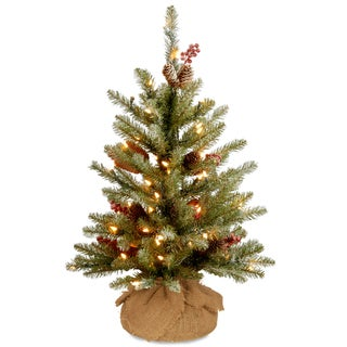 National Tree Company 2' Dunhill Fir Christmas Tree with Battery Operated Warm White LED Lights
