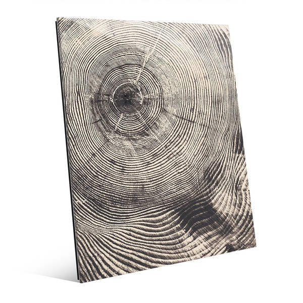 Tree Ring Act Glass Wall Art