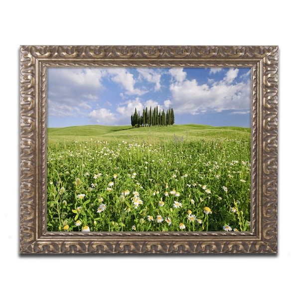 Michael Blanchette Photography 'Cypress Hill' Ornate Framed Art