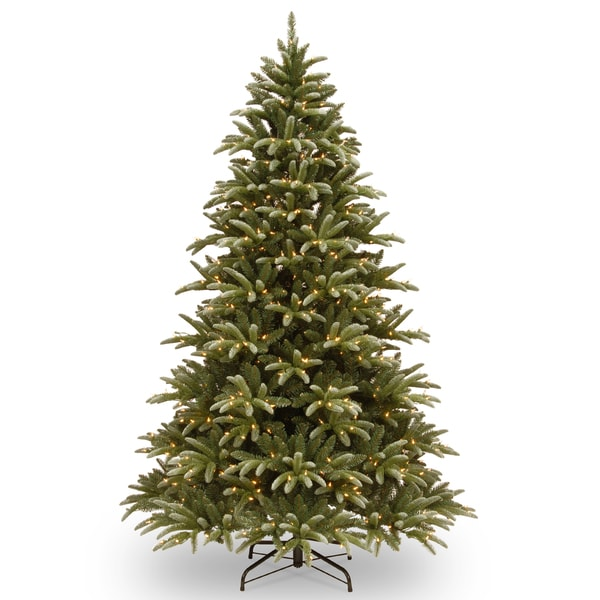 7.5' Frosted Green Ridge Fir Tree with Clear Lights