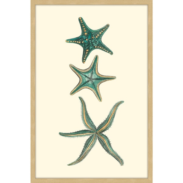 Marmont Hill - 'Aqua Starfish' Framed Painting Print