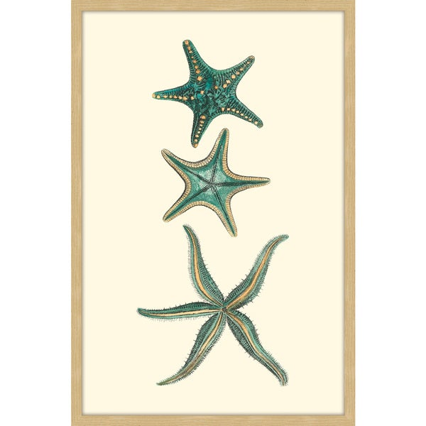Marmont Hill - 'Aqua Starfish' Framed Painting Print