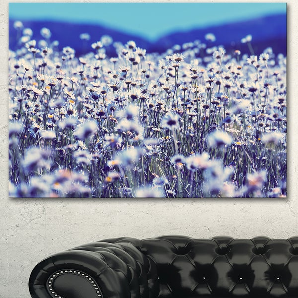 Amazing Light Blue Chamomile Blossom - Large Flower Wall Artwork