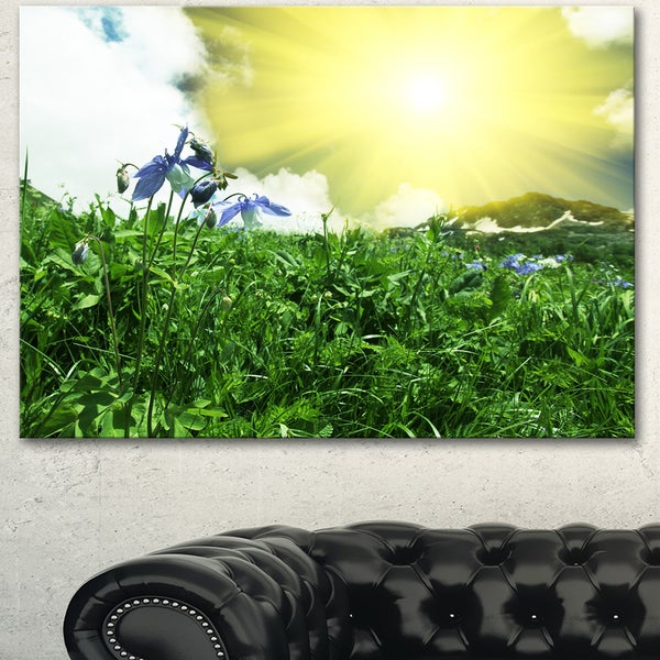Sunny Meadow with Green Grass - Extra Large Landscape Canvas Art