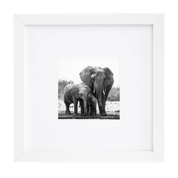 White 8x8 Picture Frame