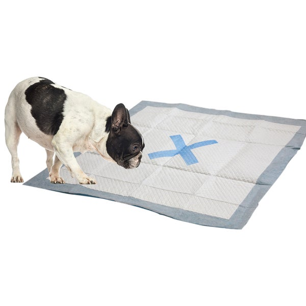 "X Marks The Spot Puppy Pads 22""X22"""