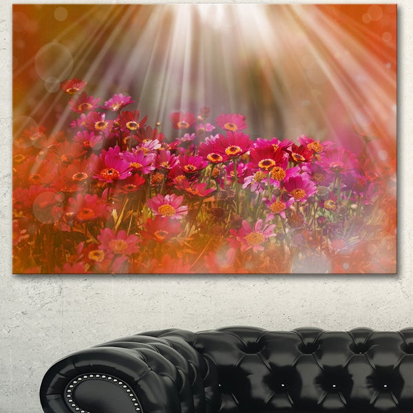 Designart 'Sunrays over Little Red Flowers' Large Floral Canvas Artwork