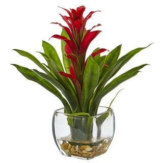 The Curated Nomad Zaius Silk Bromeliad Arrangement with Glass Vase