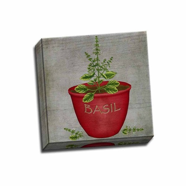 Picture It on Canvas 'Herb Basil' Wrapped Canvas