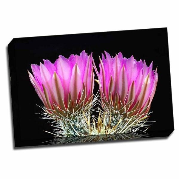 Hedgehog Flowers II 24x16 Wrapped Canvas