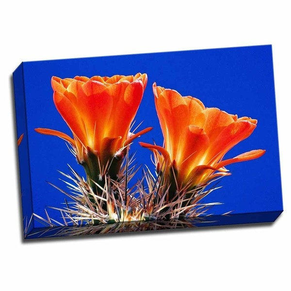 Picture It on Canvas 'Claret Cups on Blue II' 16-inch x 24-inch Wrapped Canvas Art