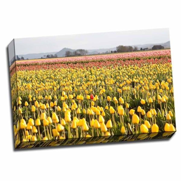 Picture It on Canvas 'Yellow and Orange Tulips III' Wrapped Canvas