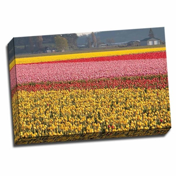 Picture It on Canvas 'Reds Pinks and Yellows' 16-inch High x 24-inch Wide Wrapped Canvas