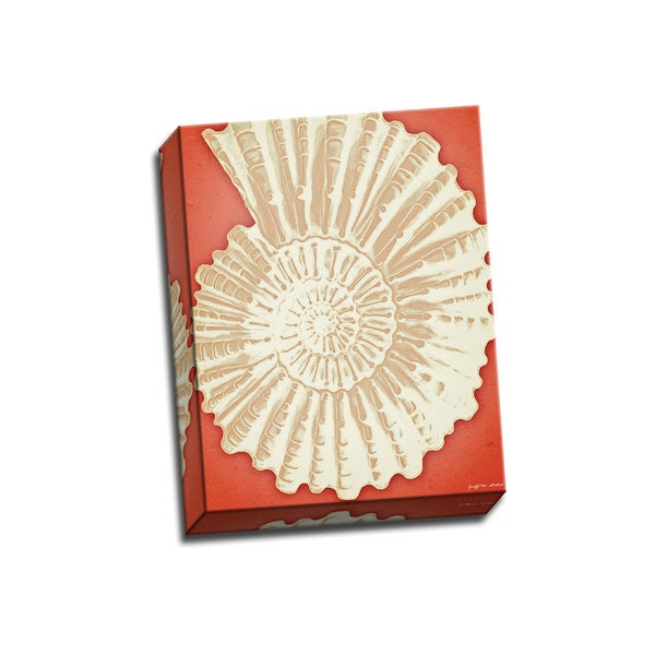 Ammonite Shell White on Coral 11x14 Wrapped Canvas