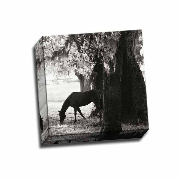 Picture It on Canvas 'Sunrise Horses VII Sq' 12-inch x 12-inch Wrapped Canvas Artwork