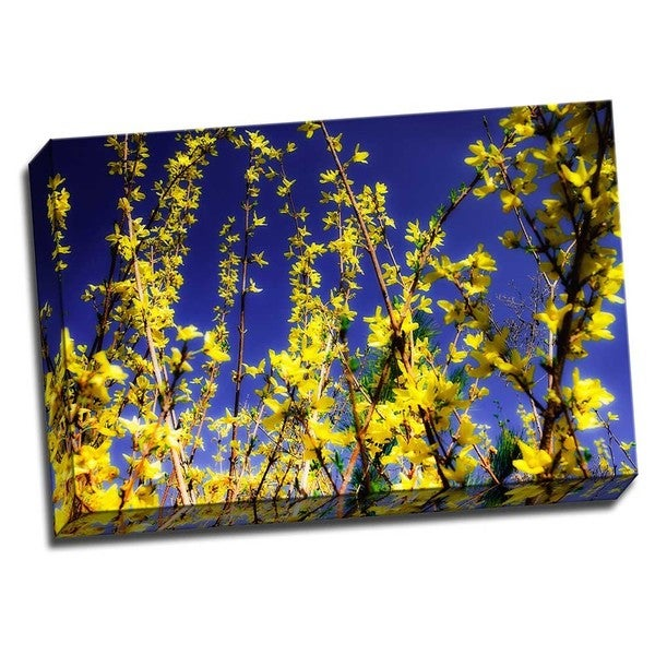 Picture It on Canvas 'Spring Show III' Multicolored Wrapped Canvas Artwork