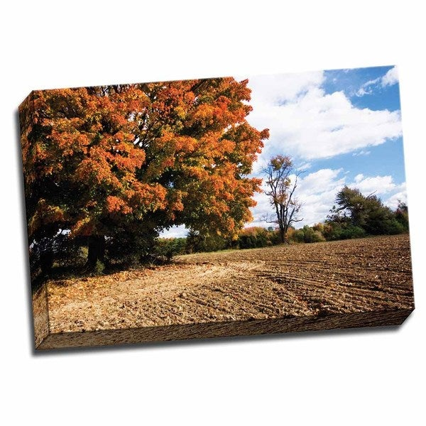 Picture It on Canvas 'Autumn Scene II' 24 x 16 Wrapped Canvas Wall Art