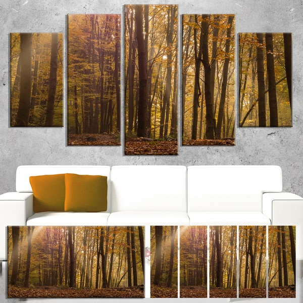 Designart 'Dense Forest in Rays of Rising Sun' Large Forest Canvas Art 22009632