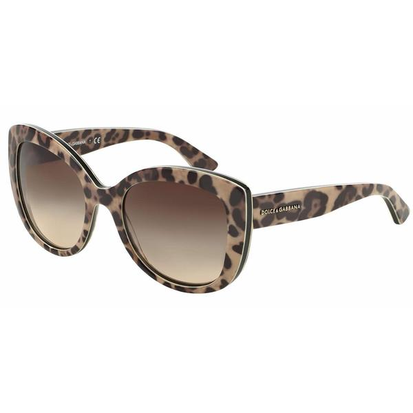 Dolce&Gabbana Women DG4233 ENCHANTED BEAUTIES 287013 Black Cat Eye Sunglasses