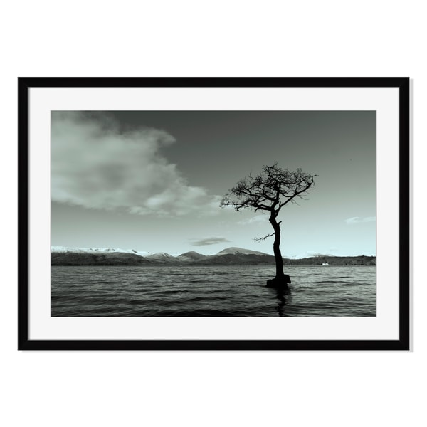 Tree at Loch Lomond, Framed Paper Print