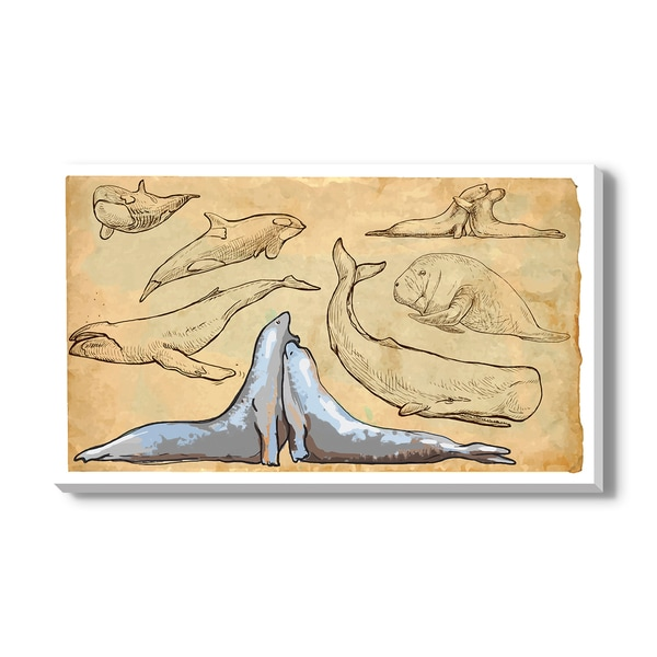 SEA MAMMALS, Canvas Gallery Wrap