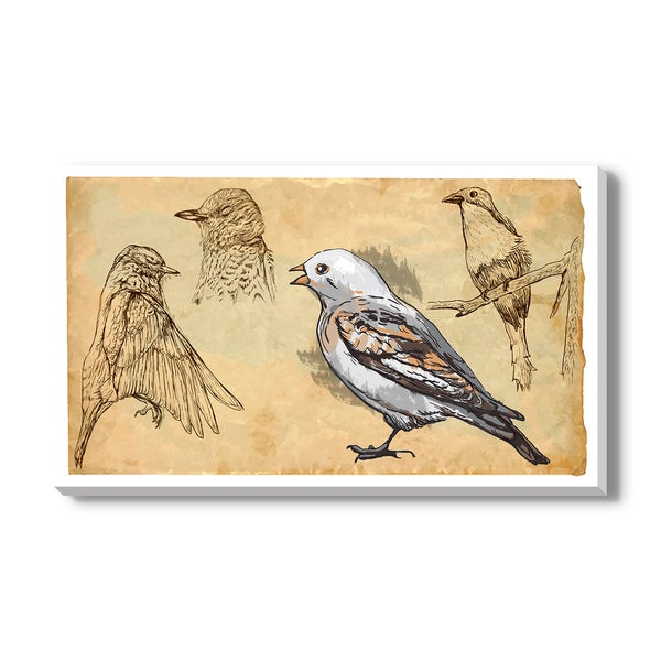 SONGBIRDS, Canvas Gallery Wrap