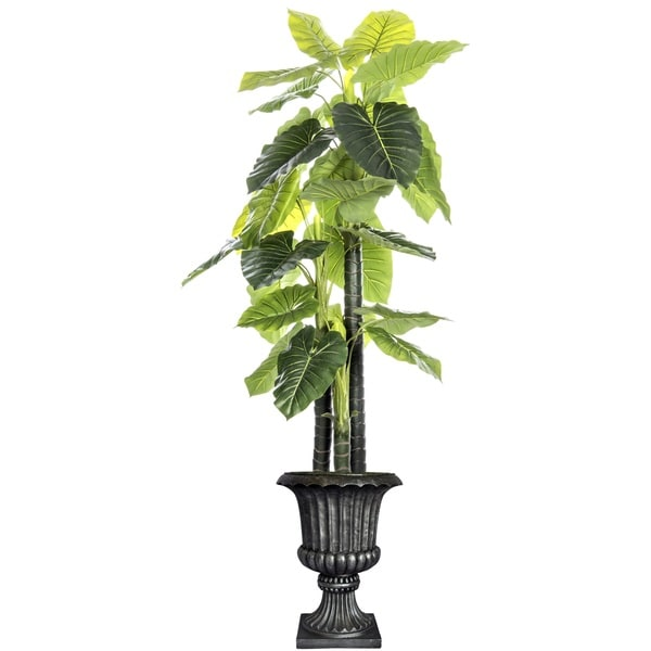 Laura Ashley 85.5-inch Tall Indoor or Outdoor Elephant Ear Plant in Fiberstone Urn