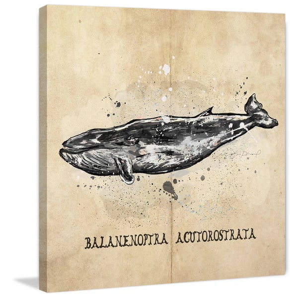 Marmont Hill - 'Baleine' by Marie-Eve Pharand Painting Print on Wrapped Canvas