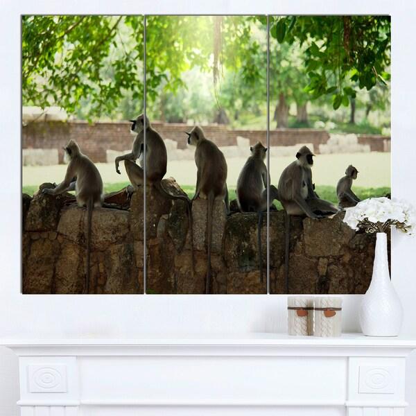 Designart 'Troop of Monkeys in Sri Lanka' African Art Canvas Print 22400044